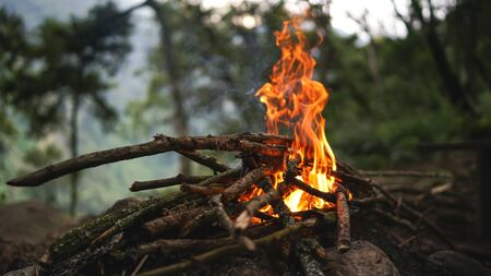 Bright big campfire in the forest, camping outdoors adventure, warm and cosy place in the mountains, chemical smog of ozone, wood smoke bad for environment