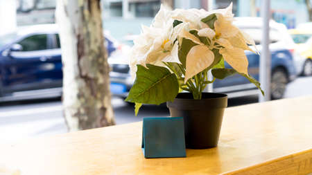 white plastic flower in a pot on the wooden table at the restaurant outdoors, decoration ideas Banque d'images