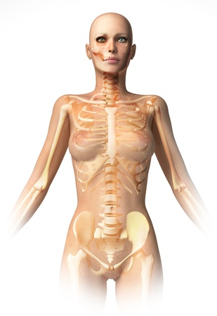 medicine chest: Woman body, with bone skeleton superimposed. Anatomy image.