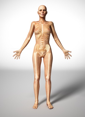 Naked woman standing on floor, with bone skeleton superimposed.