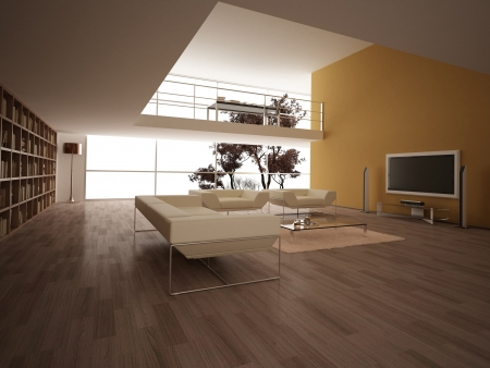 Modern large living-room, with wooden floor, bookshelves and other few elements. Minimalist. Stock Photo