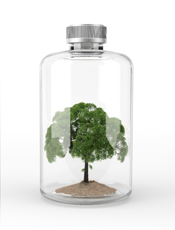 Tree inside a glass bottle  On white background with clipping path included Stock fotó - 19893786