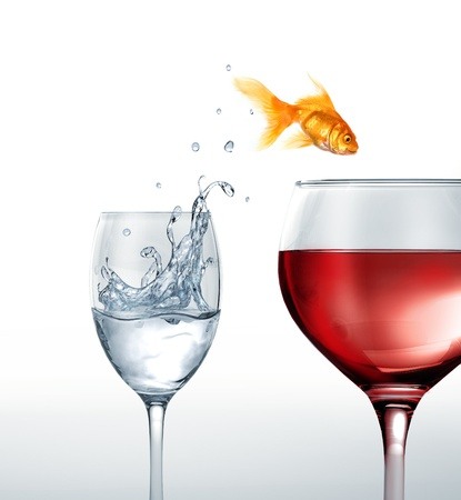 goldfish jump: Gold fish smiling jumping from a glass of water, to a glass of red wine. On white background. Stock Photo