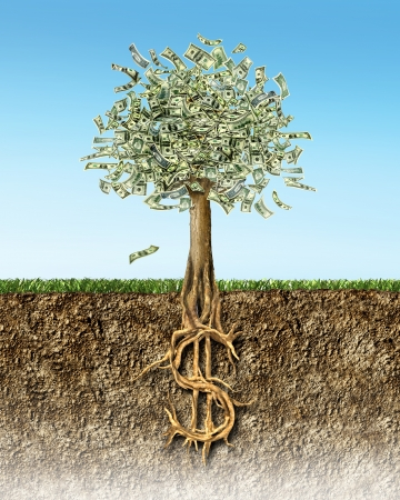 hundred dollar bill: Money tree in soil cross section showing US Dollar sign roots.