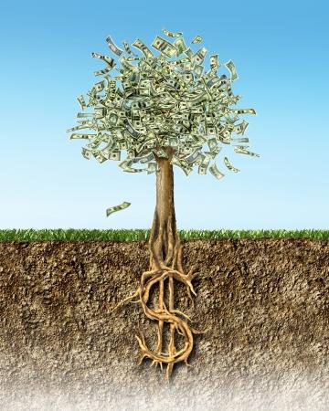 raices de plantas: �rbol del dinero de la secci�n transversal del suelo que muestra EE.UU. ra�ces signo de d�lar.