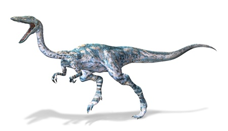 Photorealistic 3 D rendering of a Coelophysis. On white background with drop shadow and clipping path included. photo