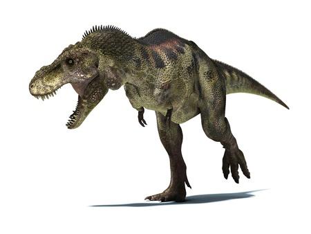 tiranosaurio rex: Tyrannosaurus Rex, muy bien detallada y cient�ficamente correcto. aislado en fondo blanco con trazado de recorte. Foto de archivo