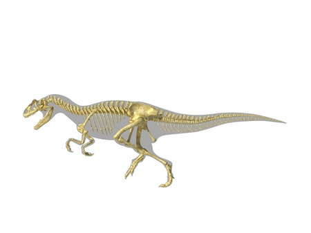 Allosaurus dinosaur silhouette with photo-realistic skeleton. Scientifically correct rendering, on white background, with clipping path. photo