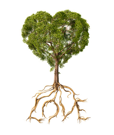 Boom met bladeren met de vorm van een hart en wortels als tekst Liefde op een witte achtergrond