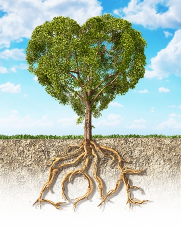 Cross section of soil showing a tree heart shaped, with its roots as text Love  Grass on the surface and fluffy clouds sky in the background  Stock Photo