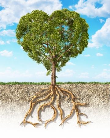 Dwarsdoorsnede van de bodem die een tree hartvormige, met zijn wortels als tekst Liefde Gras op het oppervlak en pluizige wolken hemel op de achtergrond