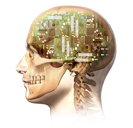 Male human head with skull and artificial electronic circuit brain in ghost effect, side view. Anatomy image, on white background, with clipping path. Standard-Bild