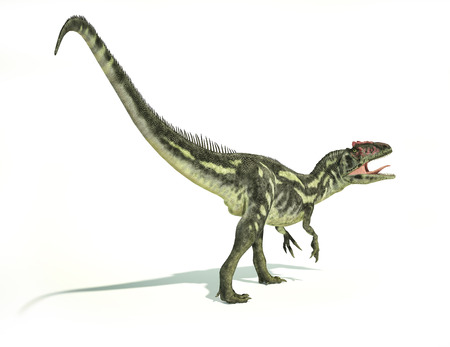 scientifically: Allosaurus Dinosaur, photorealistic and scientifically correct representation, dynamic posture. On white background with drop shadow. Clipping path included.