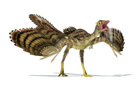 scientifically: Photorealistic and scientifically correct representation of an Archaeopteryx dinosaur. Dynamic view.  Stock Photo