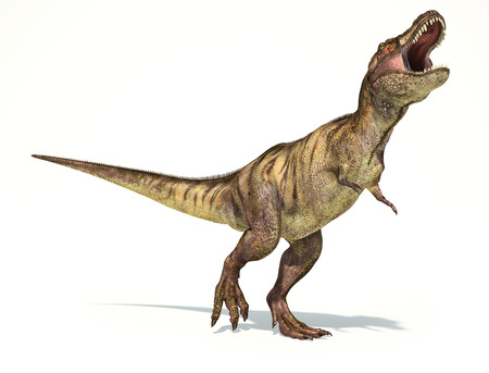 enormous: Tyrannosaurus Rex dinosaur, full body photorealistic representation. Dynamic view.