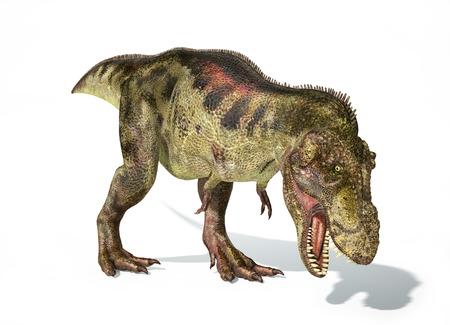 Tyrannosaurus Rex dinosaur, full body photorealistic representation. Dynamic view.  photo