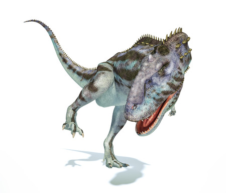 bipedal: Majungasaurus dinosaur, full body photorealistic representation, scientifically correct.  Stock Photo