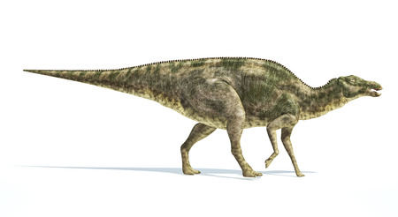 scientifically: Maiasaura dinosaur, full body photorealistic representation, scientifically correct. Side view,