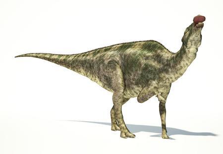 mesozoic: Maiasaura dinosaur, full body photorealistic representation, scientifically correct. Dynamic view Stock Photo