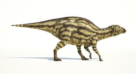 scientifically: Maiasaura dinosaur, young child, full body photorealistic representation, scientifically correct.