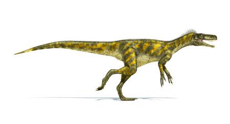 Herrerasaurus 恐竜、写実的な表現、科学的に正しい。口を開けての側面図です。