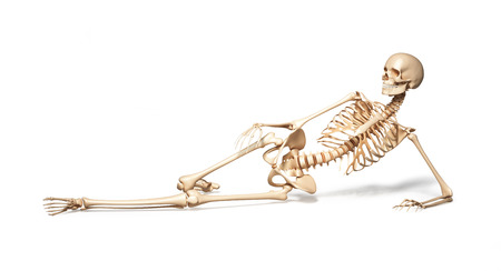 Skeleton of human female lying on floor  On white background  Clipping path included  photo