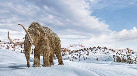Woolly mammoth set in a winter scene environment. 169 Panoramic format. Realistic 3d illustration.