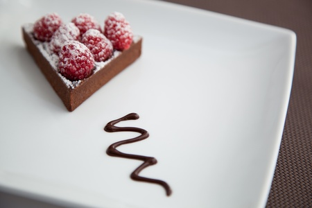 Chocolate Cake with Raspberries over on white Plate Banco de Imagens