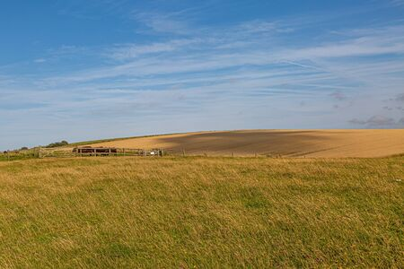 A cloud shadow passing over a field along the South Downs Way in Sussex, on a sunny summers evening Archivio Fotografico