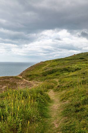 A coastal path along the cliffs near Newhaven in Sussex