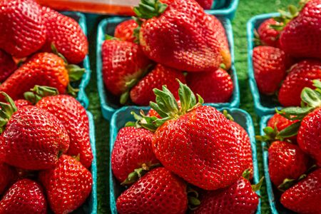 Punnets of vibrant red strawberries for sale on a market stall