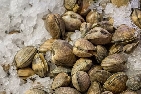 Clams resting on ice for sale on a market stall