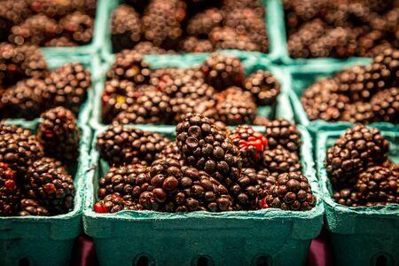 Punnets of blackberries for sale on a market stall Banco de Imagens
