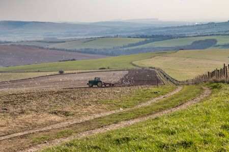 A tractor ploughing a field in the South Downs in Sussex, with birds flocking around