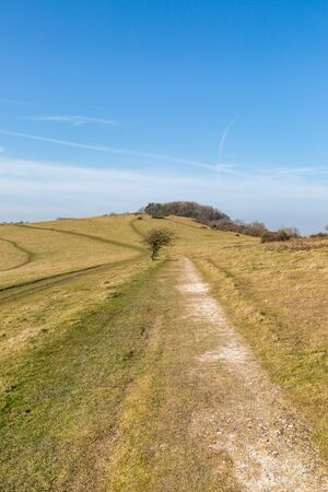 Looking along a chalk pathway in the South Downs in Sussex, on a sunny winters day Stock Photo