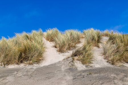 Sand dunes and a blue sky at Ocean Beach, in San Francisco, California Banco de Imagens