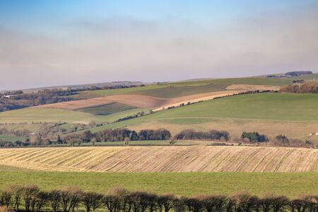 A South Downs Landscape of Patchwork Fields in Winter