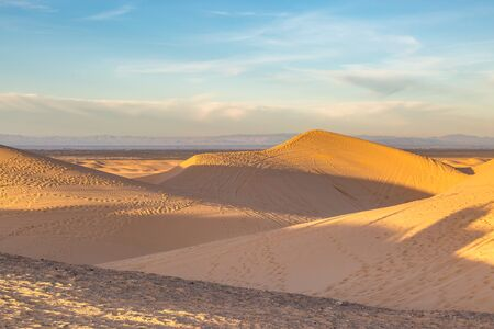 Looking out across the Imperial Sand Dunes in California, on a sunny early morning