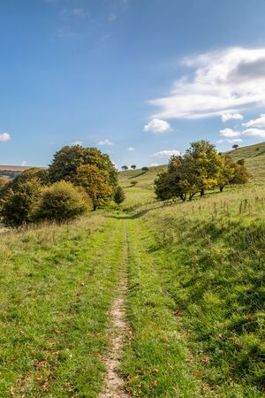 A pathway through green Sussex countryside, on a sunny autumn day