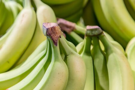 Bunches of Bananas on a market stall
