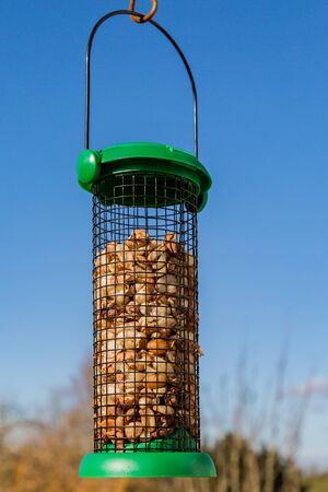 Nuts in a bird feeder during winter