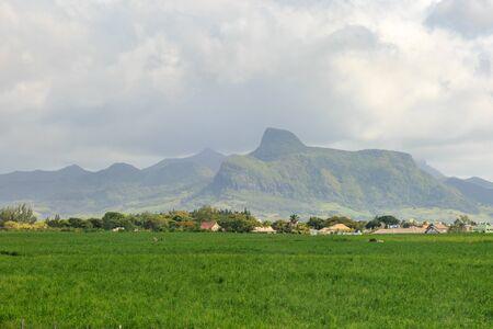 A green Mauritian landscape under a cloudy sky