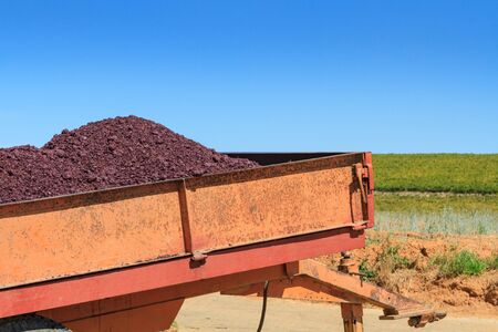 Pomace from wine making piled up in a cart, taken on a sunny day in South Africa