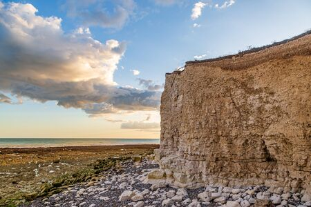 Chalk cliffs on the Sussex coast on a summers evening, viewed from Hope Gap beach