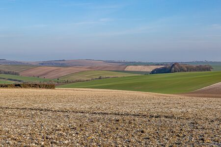 Patchwork fields in the South Downs in Sussex, on a sunny winters day Stock fotó