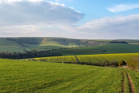 A green Sussex farm landscape on a sunny spring morning