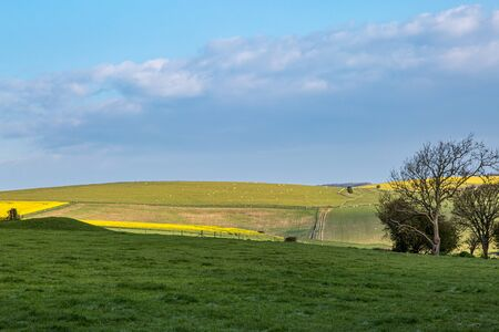 Looking out over a tranquil South Downs landscape, on a sunny spring day