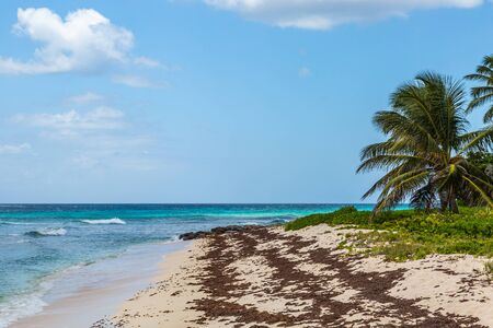 Looking out over a sandy beach on the Caribbean island of Barbados Stock Photo