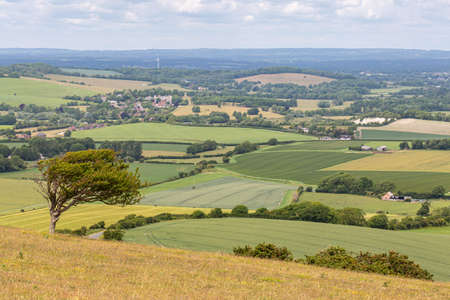 Looking out over a South Downs landscape from Firle Beacon in Sussex