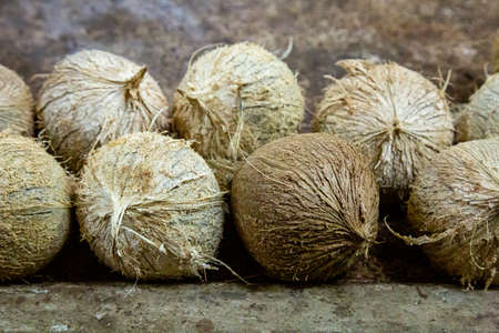 Coconuts for sale on a market stall